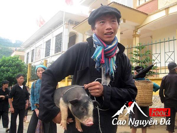 Lợn Cắp nách món ăn ngon hấp dẫn của núi rừng Tây Bắc